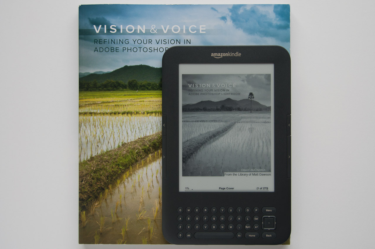 Vision and Voice vs ebook (portrait)