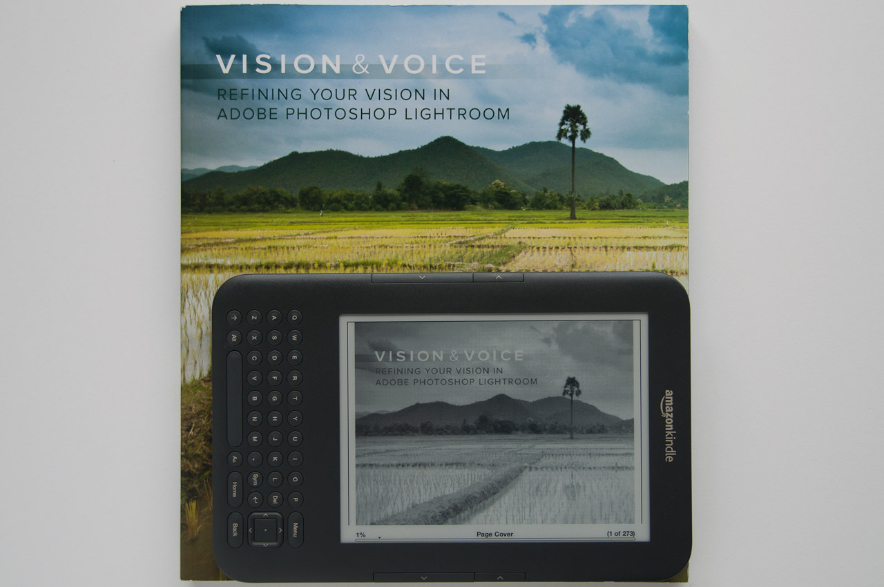 Vision and Voice vs ebook (landscape)