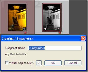 Snapshotter plugin main dialog